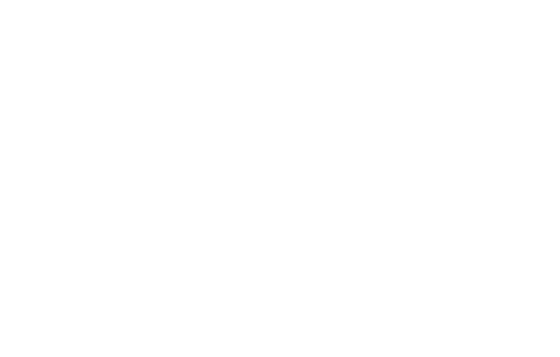 Individual coachings for executives and experts